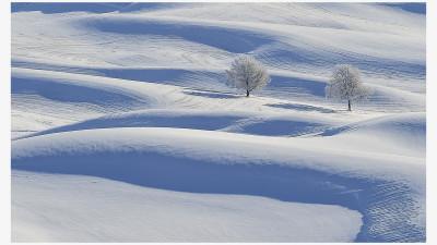 겨울팔로스 2탄