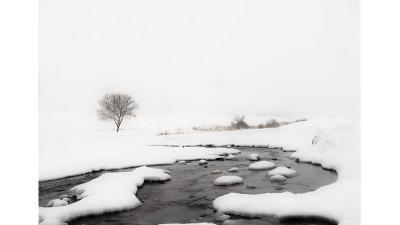 winter  Palouse