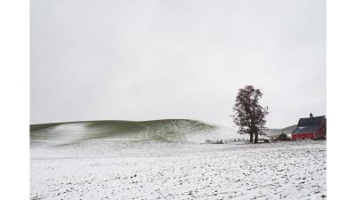 팔루스 겨울 풍경
